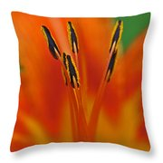Day Lily Anther Throw Pillow