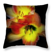 Day Lily On Black Throw Pillow
