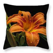 Day Lily Throw Pillow