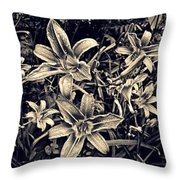 Day Lily Triptych Throw Pillow by Sarah Loft