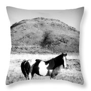 Day Moon And Paint Throw Pillow