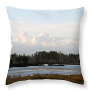 Day Of Beauty Throw Pillow