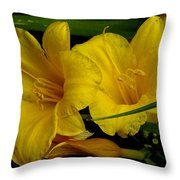 Day Of The Lilies  Throw Pillow