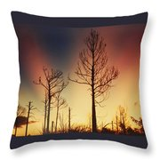 Daybreak After Hurricane Andrew Throw Pillow