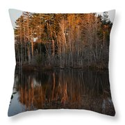 Daybreak At The Pond Throw Pillow