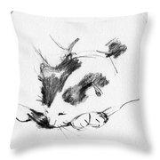 Daydreamer_3 Throw Pillow