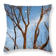 Daylight Moon Throw Pillow