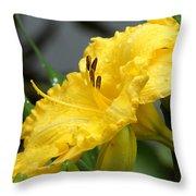 Daylilies Abound Throw Pillow