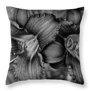 Daylilies Black And White Throw Pillow