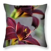 Daylilies Forever Throw Pillow