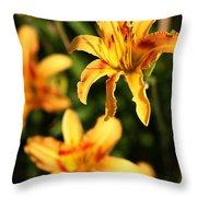Daylillies0107 Throw Pillow