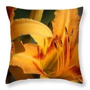 Daylillies0185 Throw Pillow