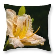 Daylily After A Morning Rain Throw Pillow