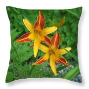 Frans Hall Daylily Attention Getter Throw Pillow