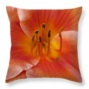 Daylily Bloom Throw Pillow