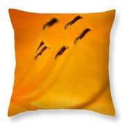 Daylily Closeup Throw Pillow