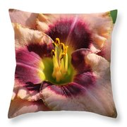 Daylily Collection # 14 Throw Pillow