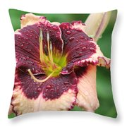 Daylily Collection # 7 Throw Pillow