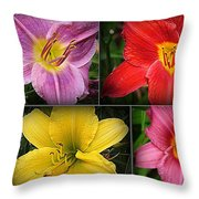 Daylily Days  Throw Pillow