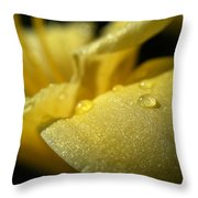 Daylily Dew Drops Throw Pillow
