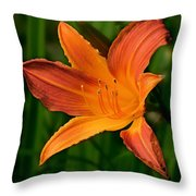 Daylily II Throw Pillow