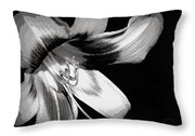 Daylily In Gray Throw Pillow