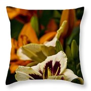 Daylily Picture 487 Throw Pillow