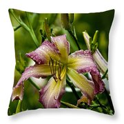 Daylily Picture 494 Throw Pillow