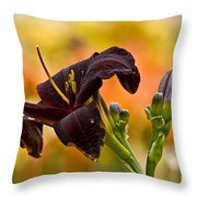 Daylily Picture 514 Throw Pillow