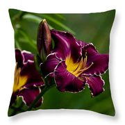 Daylily Picture 526 Throw Pillow