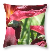 Daylily Shade For A Tree Frog Throw Pillow