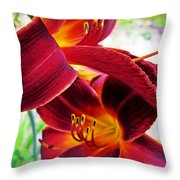 Daylily Twice Throw Pillow