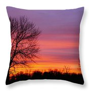 Day's End Elm Throw Pillow