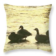 Days Love  Throw Pillow