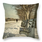Days Of Cold Chills Throw Pillow