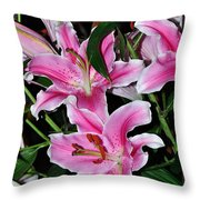 Dazzling Stargazers Throw Pillow
