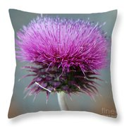 Dazzling Thistle Beauty Throw Pillow