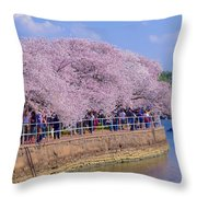 Dc Blossom Visitors Throw Pillow