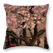 Dc Cherry Blossom Tree Throw Pillow