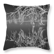 Dead Arch Black And White Throw Pillow