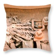 Dead Dove Decomposing In Railway Track Throw Pillow