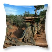 Dead Horse Point Tree 1 Throw Pillow