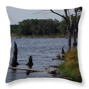Dead Lake Throw Pillow