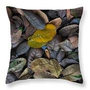 Dead Leaves Throw Pillow