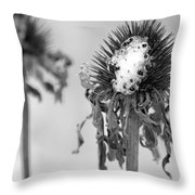 Dead Of Winter Throw Pillow