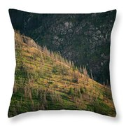 Dead Pines Cover A Steep Slope Throw Pillow