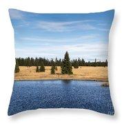 Dead Pond Throw Pillow