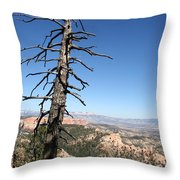 Dead Tree At Bryce Canyon  Overlook Throw Pillow