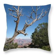 Dead Tree At Grand Canyon South Rim Throw Pillow