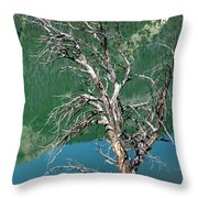 Dead Tree At Green River Lakes -wyoming Throw Pillow